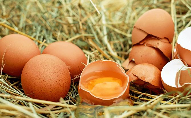 妊婦さんは卵を食べない方が良いって本当?